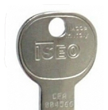 Keys for Iseo Locks